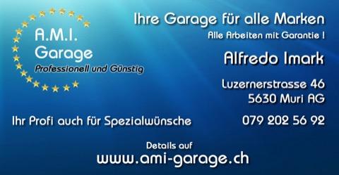 A.M.I. Garage, Muri